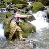 [秘密の釣り場]漁業組合の無い川 静岡県のV川のサムネイル