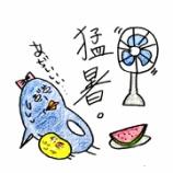 『🍉猛暑🍉』の画像
