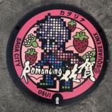 『【佐賀市】ロマンシング佐賀マンホールめぐり』の画像