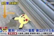ピカチュウ、台湾で電動シャッターに挟まれ死亡