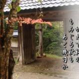 『宿り木』の画像