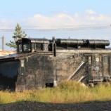 『津軽鉄道キ100形キ101』の画像