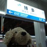 『【日本の旅~JR博多CITYお散歩】』の画像
