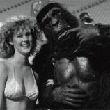 『【DCI】ビキニとゴリラ!? 今週のスポットライト動画は、1989年ベルベット・ナイツです!』の画像