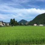 【洗礼】福井の田舎の集落に移住した若者、地元のジジイ共にとんでもない嫌がらせをされてしまう これは田舎住みたくなくなるわ・・・