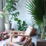 『すごいオシャレ!海外・外国のグリーンがあるお部屋アレンジ250【画像まとめ】【インテリア・雑貨】 5/5 【インテリアまとめ・画像 海外 】』の画像