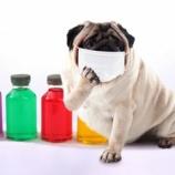 『カゼ・インフルエンザの予防に板藍根(ばんらんこん)』の画像