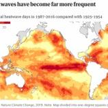 『海の生態系がまるで山火事が拡がっていくように壊滅していく』の画像