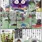 わらびの井の頭公園 観察日記
