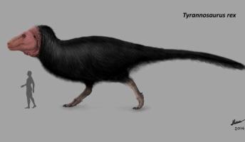 今度の新説ティラノサウルスキモすぎワロタ