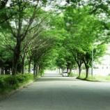 『釜石市空き家バンクをリリースしました。空き家情報をぜひご提供ください!』の画像