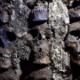 【画像】119体の人柱が発見される