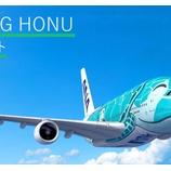 『【ANAトラベラーズ】9月のANA FLYING HONUチャーターフライト(成田)』の画像