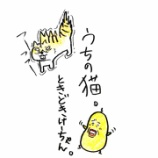 『⚡うちの猫。~ときどきけーちゃん~⚡』の画像