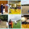運動不足の秋… (奈良市 スポーツ体験フェスティバル)