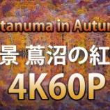 『いつか行きたい日本の名所 蔦沼』の画像