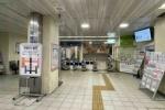 星田駅にもツバメがやってきて駅の中で子育て中!雛たちにエサをあげる母ツバメが格好いい!