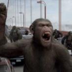 【恐怖】サルの集団、治療施設を襲撃 新型コロナ疑い患者の血液サンプル奪う