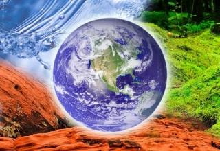 【画像】地球上から絶滅したと思われていたが再発見された生物を紹介していく…!!!