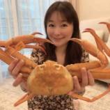 『越前蟹』の画像