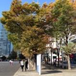 『横山大観美術展』の画像