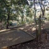 『12月の公園巡りⅡ;東大和市』の画像