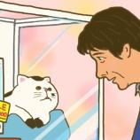 『この冬おすすめの湯たんぽ系ドラマ『おじさまと猫』&【お知らせ】』の画像