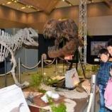 『迫力満点、恐竜だ 京都・精華で28日まで展示』の画像