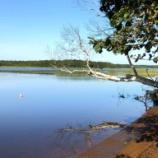 『【北海道ひとり旅】オホーツクドライブ 別海町『茨散沼』』の画像