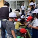 「あいち伝統野菜法性寺ねぎ」北部14小学校への食農教育開始