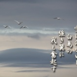 『強き翼』の画像