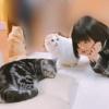 おかっぱちゃんに驚く猫wwwwwwwwwwwww