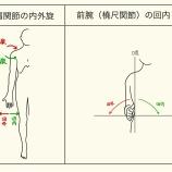 『ポージングの(視診)時の、掌のゼロ度とは?』の画像