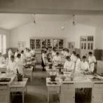 韓国人「日本が韓国を占領していた時代の写真を見てみよう」