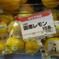 フレッシュレモンこと市川美織仕様のレモンが本格展開へ!遂にレモンになっちゃったwww【画像あり】 アイドルファンマスター