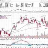 『【TSLA】テスラ大暴騰に見るグロース株投資の難しさ』の画像