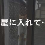【悲報】俺氏、残業から帰宅したら嫁に閉め出された結果・・・