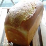 『バタートップ 』の画像