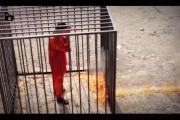 ISIL(イスラム国)ヨルダン人パイロットの「焼殺」動画・画像をネット上に公開 …信憑性は不明