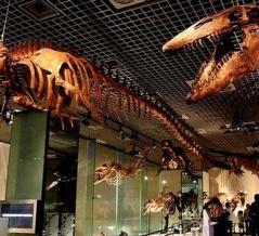海外「日本の博物館/美術館のお勧めを教えてほしい」日本の博物館/美術館に対する海外の反応