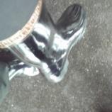 『長靴をはいた○○』の画像