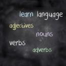最近のわたしの英語学習について ~渡米して1年半~