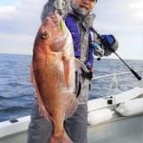 『11月 7日 釣果 スーパーライトジギング 本命マダイ綺麗な奴続いています♪』の画像