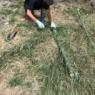 狩りに行く⁈竹で作る夏の自由工作