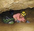 クリスタルに閉じ込められた推定5万歳の生命体を発見 蘇生させて研究する方針