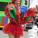2016年横浜開港記念みなと祭国際仮装行列第64回ザよこはまパレード その100(イセザキ・モール1-7st.)