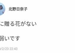 【乃木坂46】北野日奈子「君に贈る花がない に弱いです」エモすぎる・・・