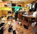 【画像】1,000匹のネコと暮らす女性が話題に