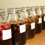 『梅酢の試作は再来年のために』の画像
