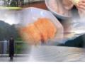 水卜アナ、インスタで変な加工した画像を投稿してしまうwwwww(画像あり)